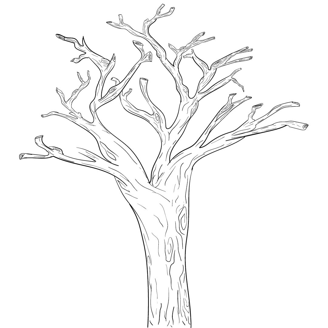 Tree Branches With Printable Pattern