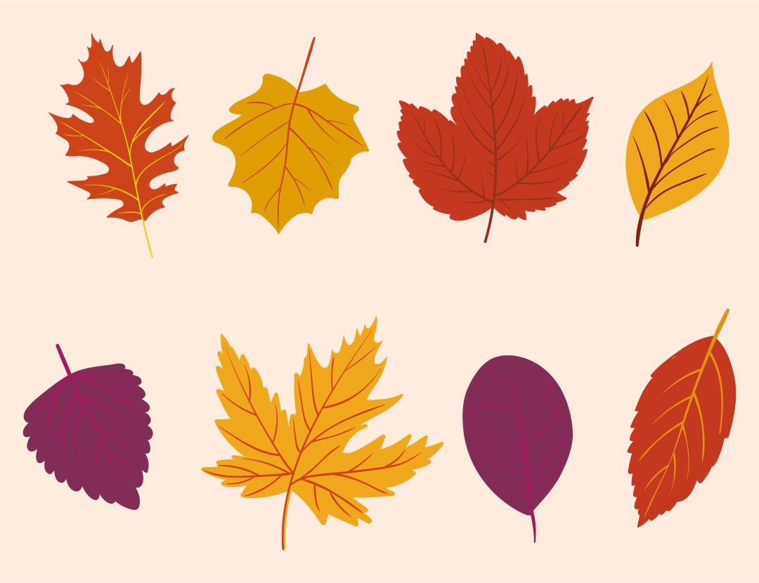 Printable Autumn Leaves Decor