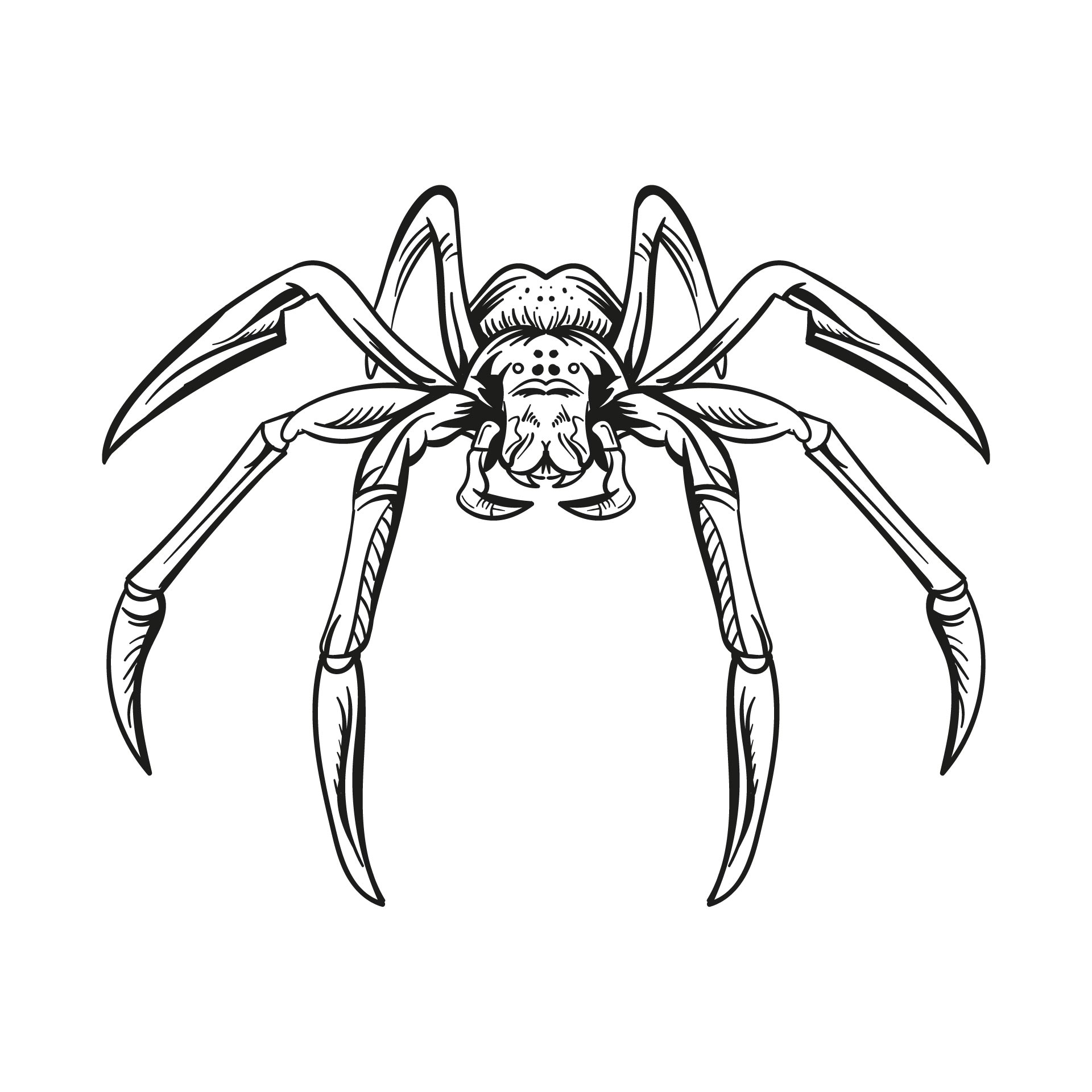 Spiders For Halloween Printable
