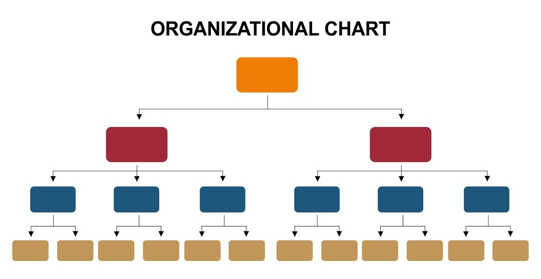 Printable Blank Organizational Charts
